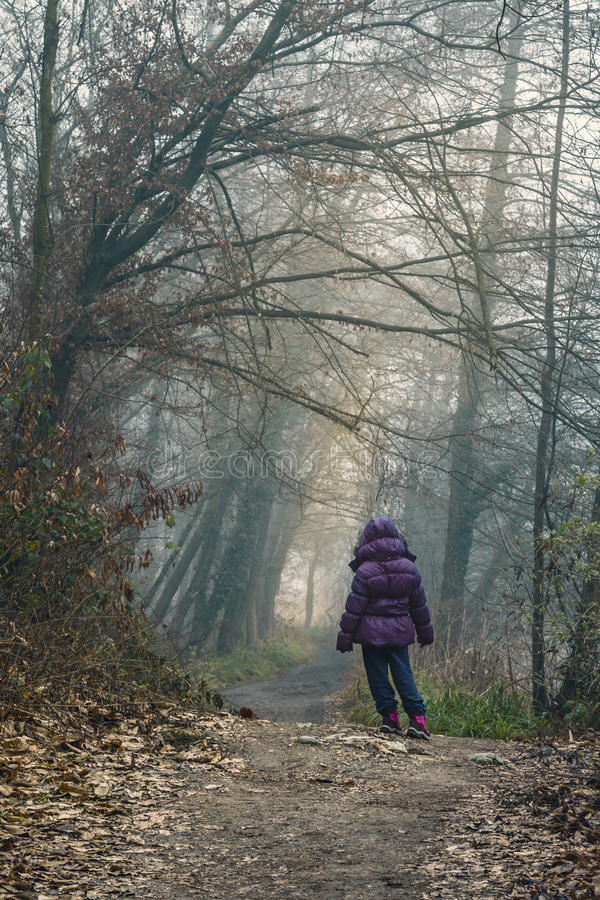 Download Enfant perdu dans la forêt photo stock. Image du aventure - 45355092