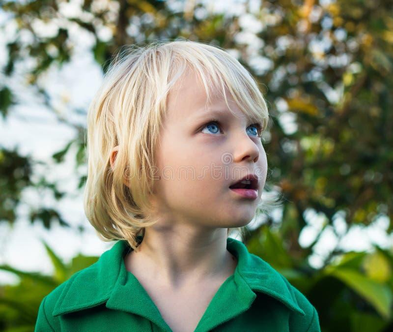 Enfant regardant avec la merveille en nature photo stock