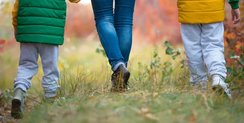 Enfantez et deux fils marchant en parc d'automne tenant des mains Les pieds se ferment  images libres de droits