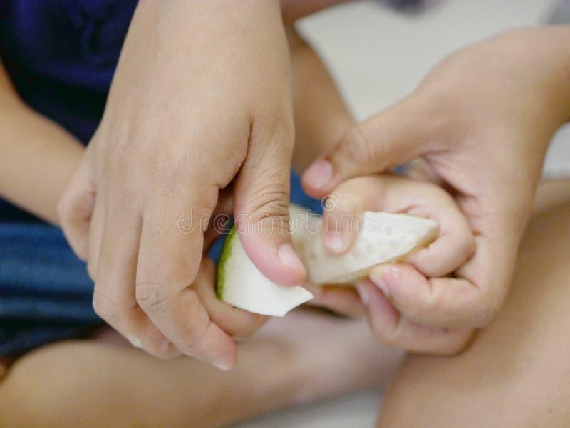 Enfantez les mains du ` s tenant ses mains du ` s de fille enseignant son bébé à éplucher le fruit, pamplemousse image libre de droits