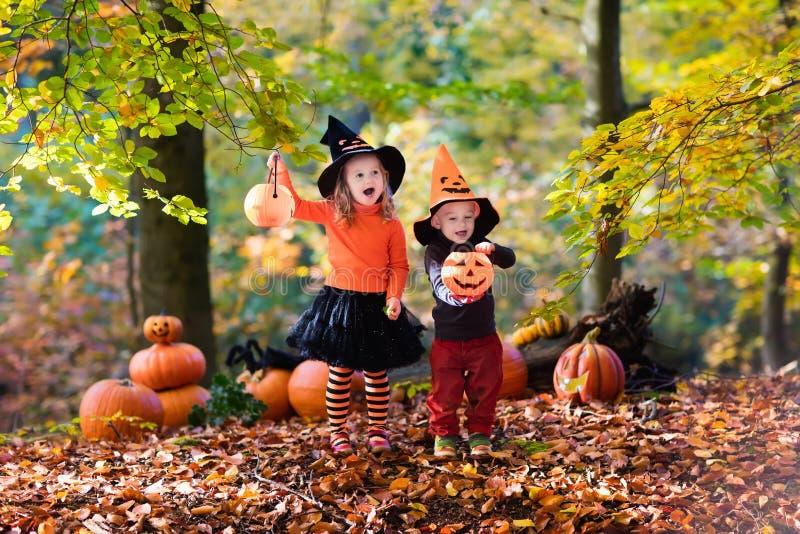 Download Enfants Avec Des Potirons Halloween Photo stock - Image du frère, halloween: 77153276
