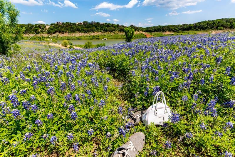 Enfants bourse et chaussures dans le domaine de Texas Bluebonnet Wildflowers dessus image stock