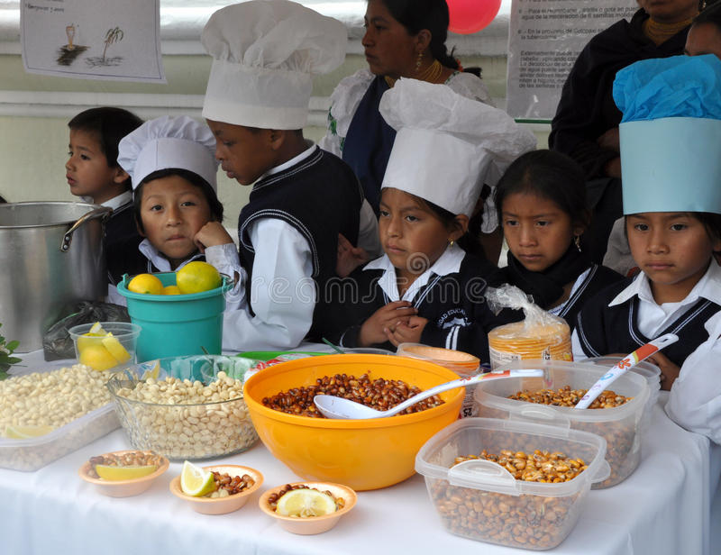 Enfants d'Ecuadorian faisant cuire la nourriture traditionnelle image stock