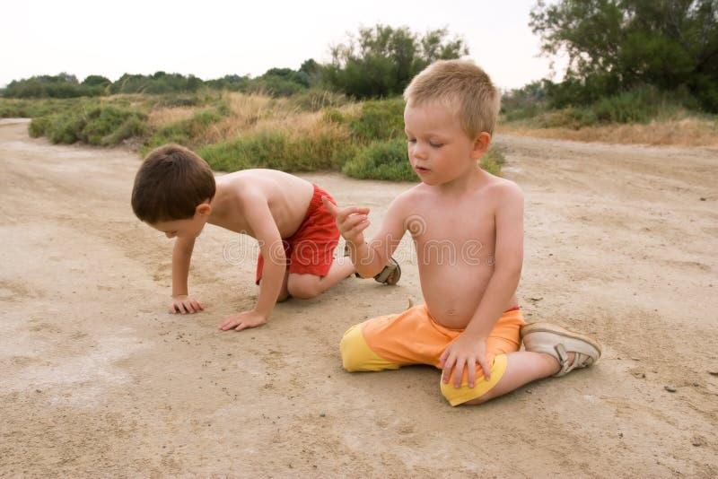 Enfants dans la nature images libres de droits
