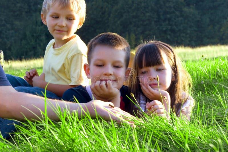 Enfants dans un pré photo stock