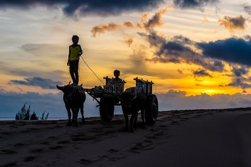 Enfants de Sihouette sur des dunes de sable images libres de droits