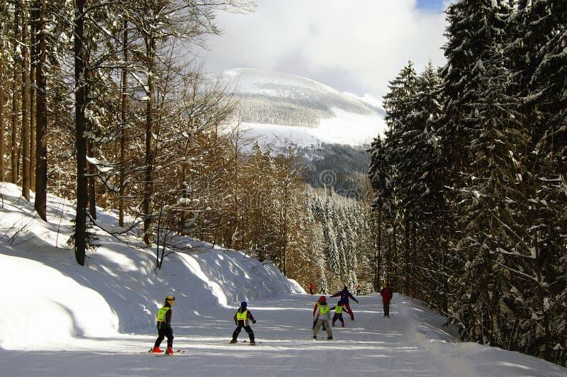 Enfants de ski photographie stock