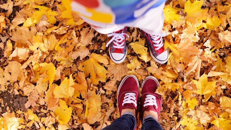 Enfants et jambes adultes dans des chaussures rouges de couleur contre le feuillage jaune images libres de droits