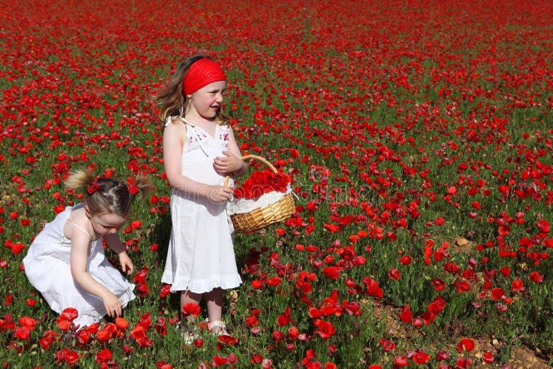 Enfants heureux jouant des fleurs de cueillette photo stock