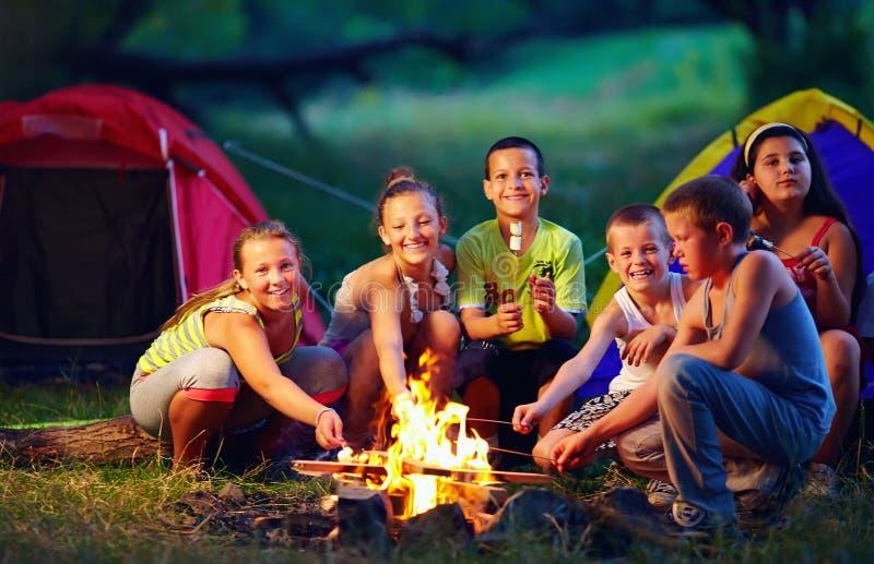 Enfants heureux rôtissant des guimauves sur le feu de camp photos libres de droits