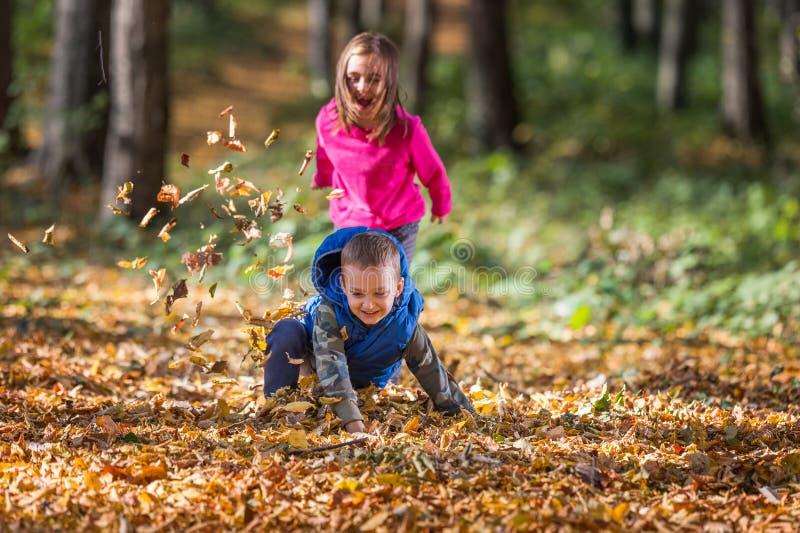 Enfants jouant avec des feuilles images stock