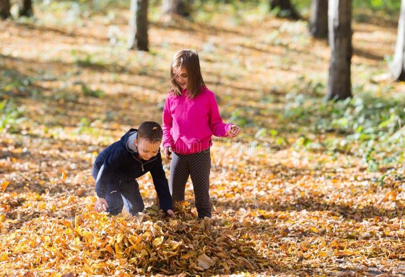 Enfants jouant avec des feuilles photographie stock libre de droits