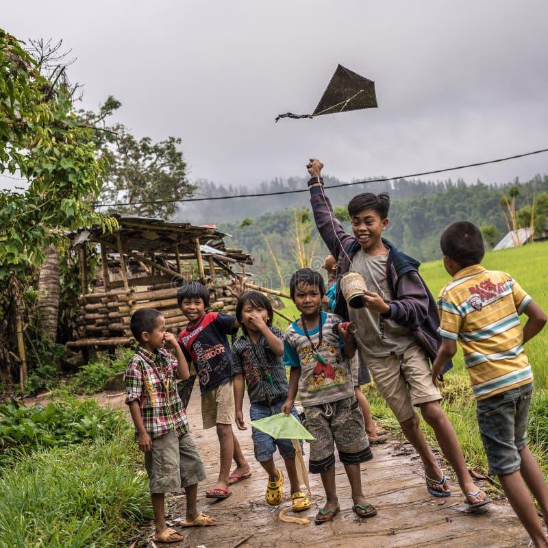 Enfants jouant avec le cerf-volant photo libre de droits