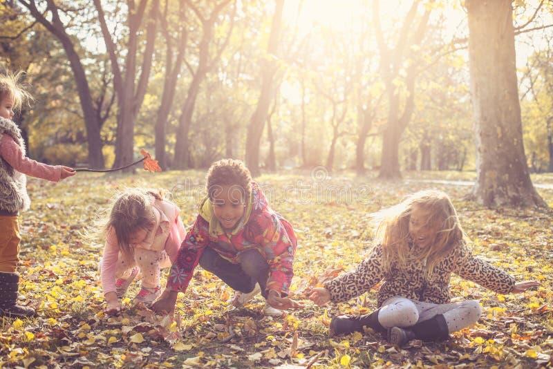 Enfants jouant avec les feuilles tombées photo stock