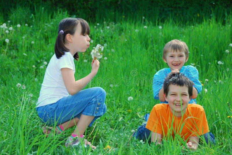 Enfants jouant dans le domaine photo libre de droits