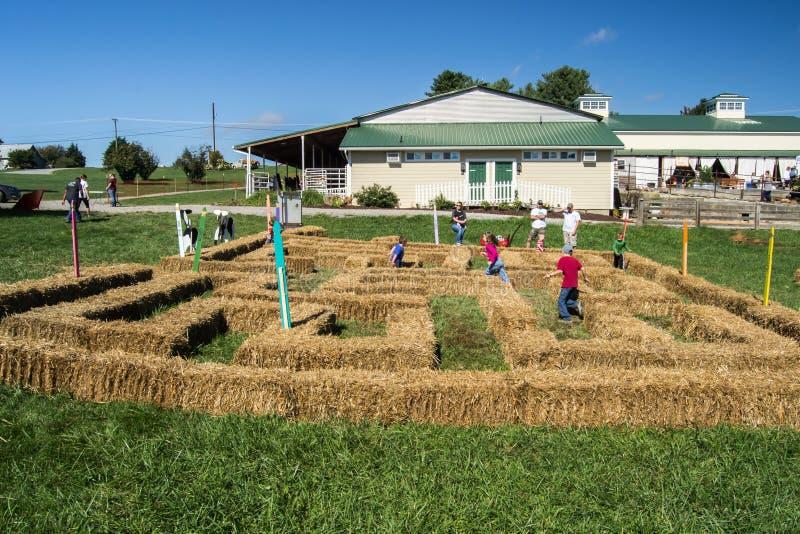 Enfants jouant dans un labyrinthe photo libre de droits