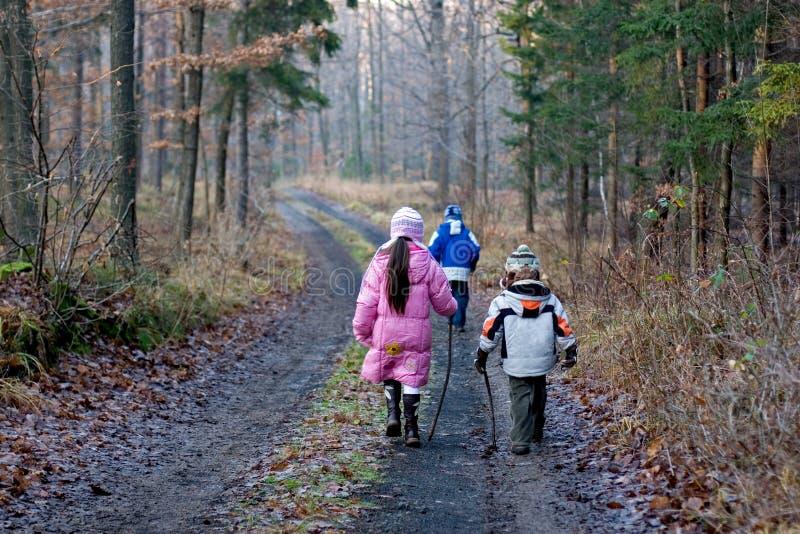 Enfants marchant en forêt de l'hiver photographie stock