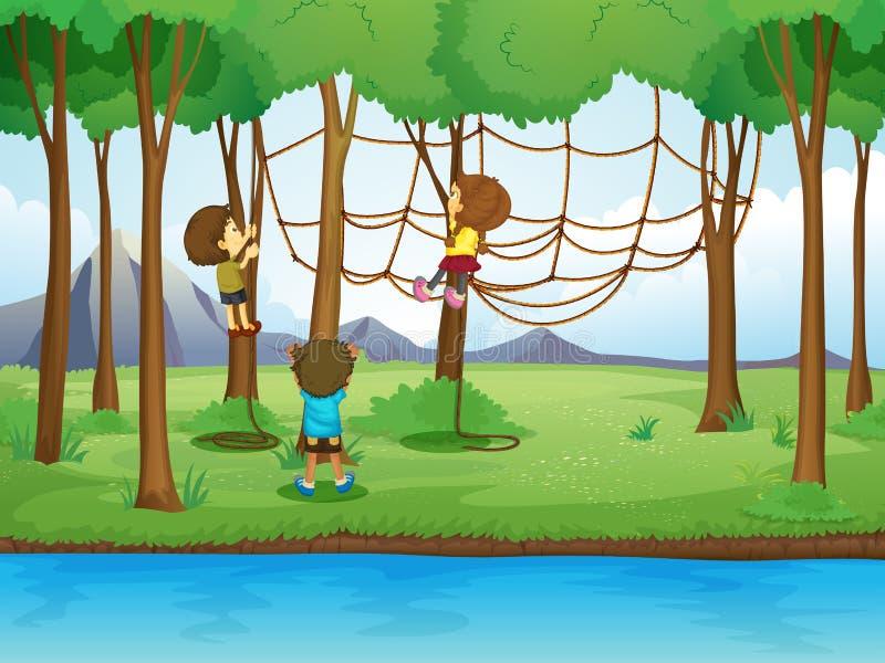 Enfants montant la corde dans la forêt illustration stock