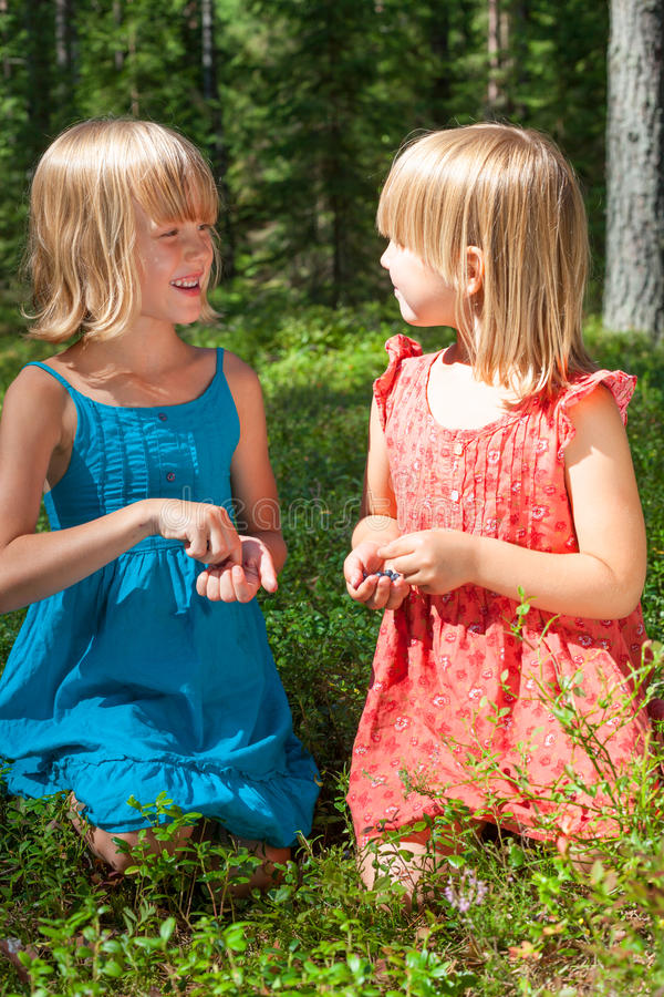Enfants sélectionnant des baies dans une forêt d'été image stock