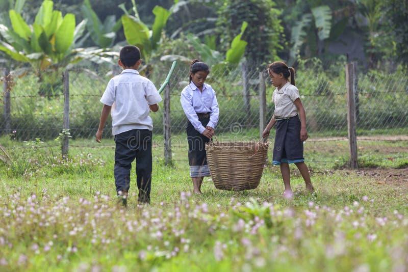 Enfants sélectionnant des déchets dans l'école photographie stock