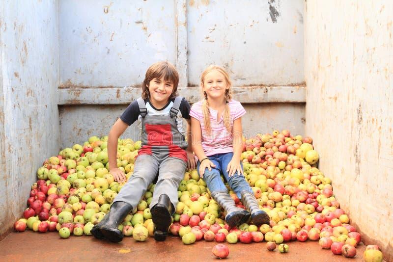 Enfants sur des pommes image stock