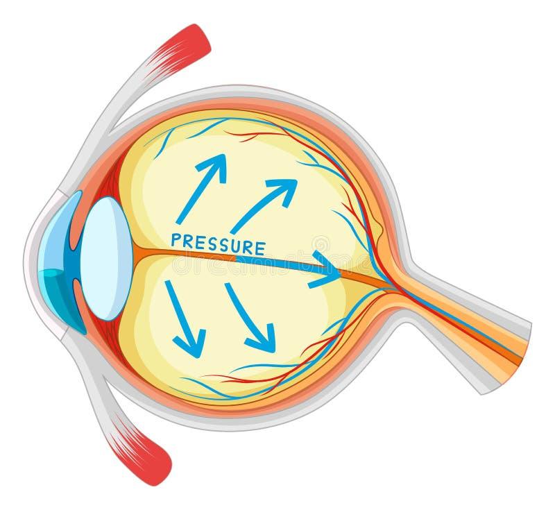 Enfermedad de ojos en mirada más atenta stock de ilustración