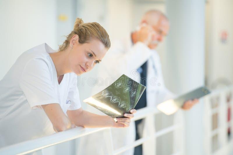 Enfermeira fêmea que olha raios X imagem de stock