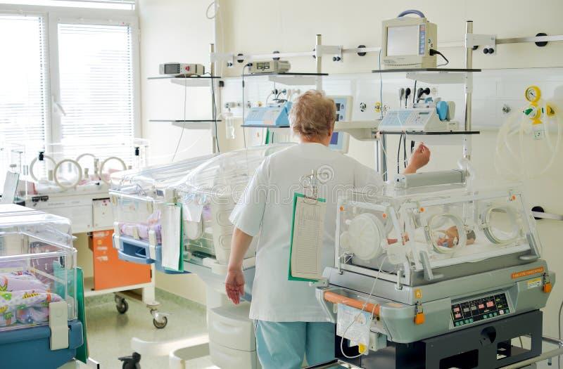 Enfermera que se ocupa al bebé recién nacido en una incubadora foto de archivo