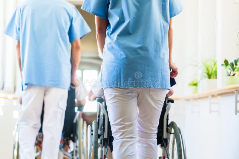 Enfermeras que empujan a mayores en silla de ruedas a través de clínica de reposo imágenes de archivo libres de regalías