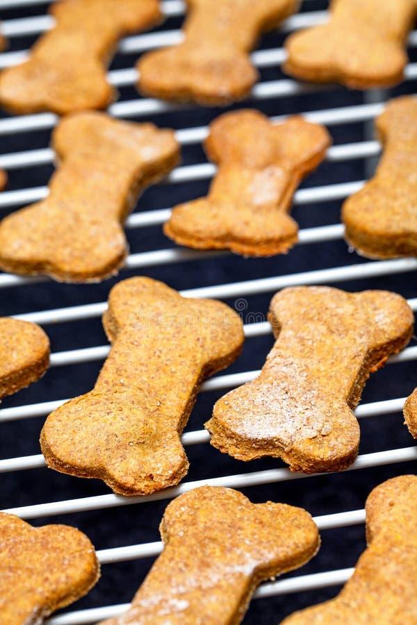 Enfriamiento cocido hecho en casa de las galletas de perro fotografía de archivo