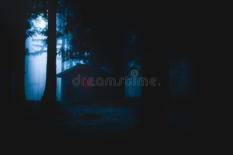 Eng die huis in geheimzinnig verschrikkingsbos bij nacht wordt verlicht stock afbeeldingen
