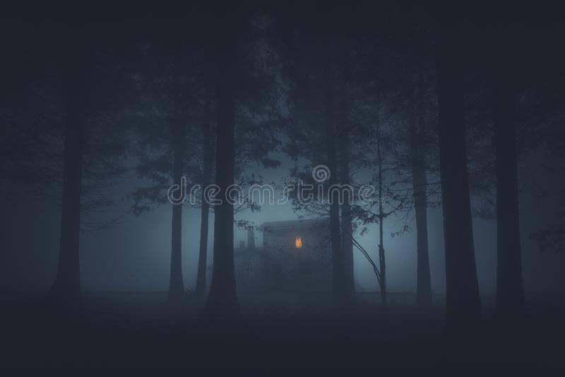 Eng huis in geheimzinnig verschrikkingsbos bij nacht royalty-vrije stock fotografie