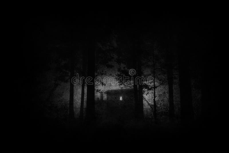 Eng huis in geheimzinnig verschrikkingsbos bij nacht in zwarte en wh stock foto