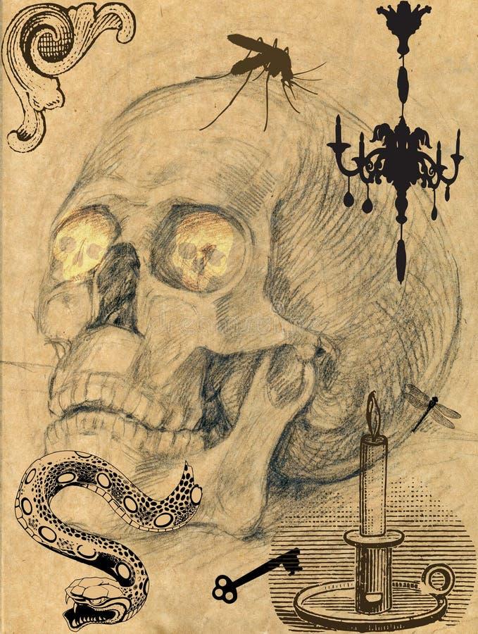 Eng schedelbeeld 4 stock illustratie