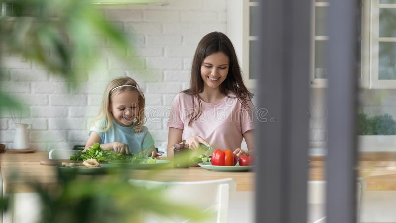 Engaged millennial woman chopping vegetables with daughter. stock photography