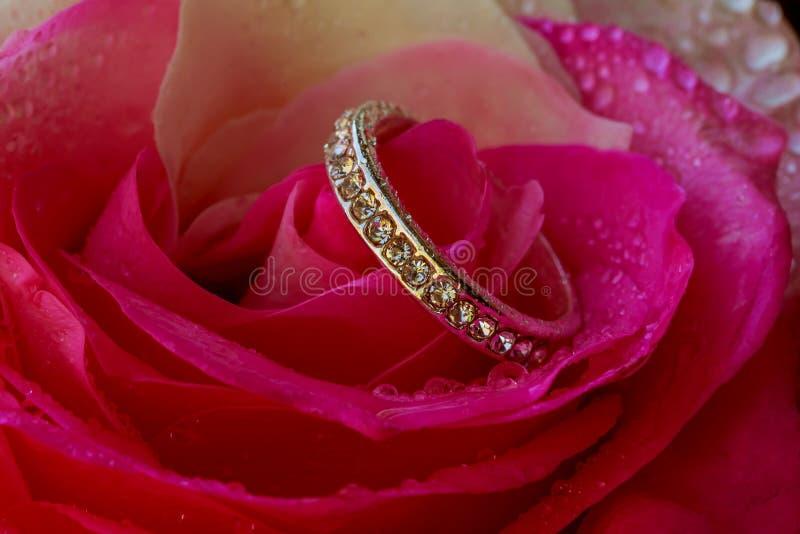 Engagez Diamond Ring sur un pétale du concept de roses du jour de valentines image libre de droits