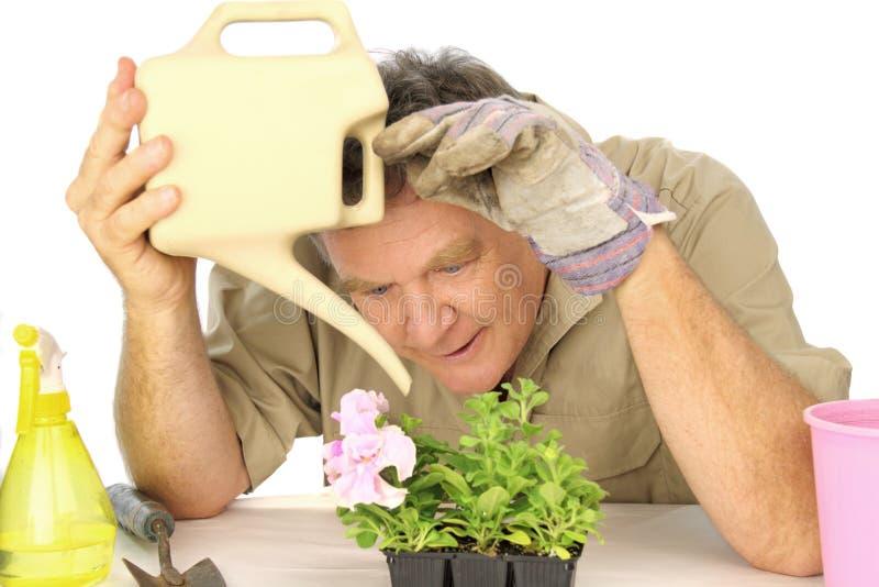 Engagierter Gärtner stockbilder
