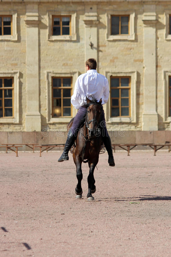 engane a equitação aos homens no garanhão da baía que salta um trote no quadrado da areia na frente do palácio imagens de stock