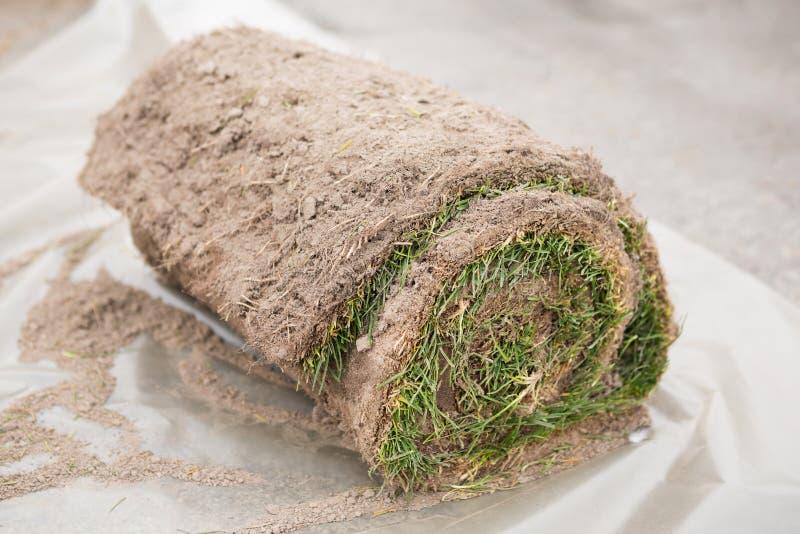 Engazonnez le gazon en petits pains prêts à être employé pour faire du jardinage ou aménager photos libres de droits