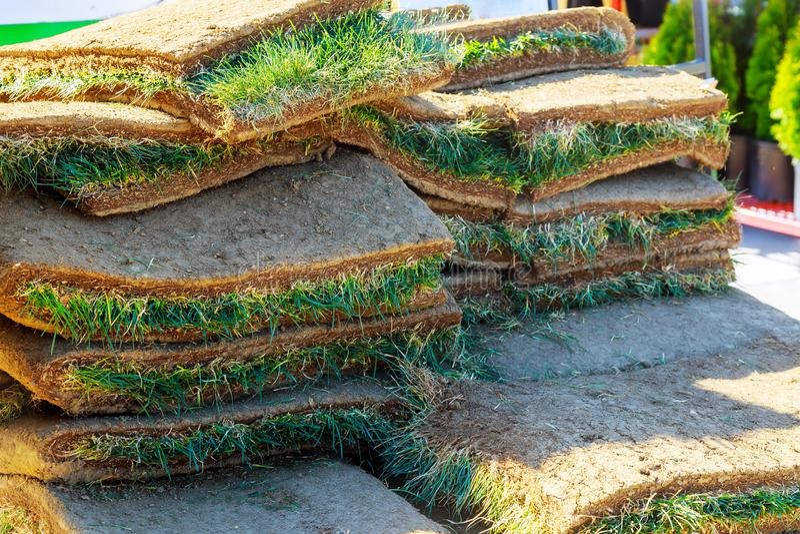 Engazonnez le tapis Rolls épluchée du sol dans le développement résidentiel Appartements des petits pains de gazon images libres de droits