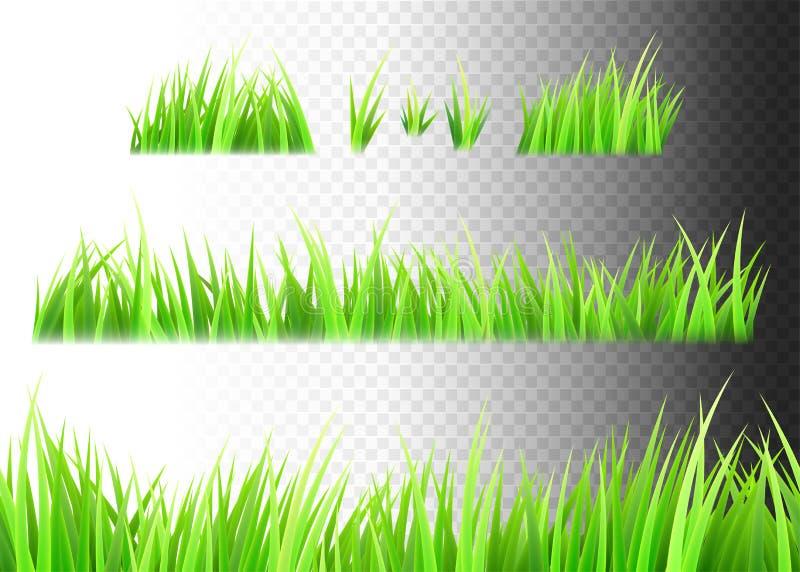 Engazonnez le vecteur d'isolement sur le fond blanc, noir et transparent Touffes d'herbe illustration de vecteur
