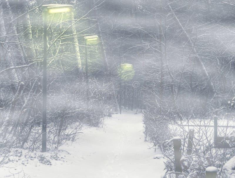 Enge bosweg met aangestoken lantaarnpalen op een mistige nacht royalty-vrije stock afbeelding