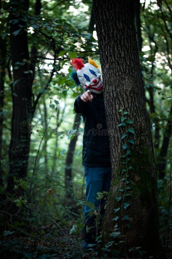 Enge clown in het hout stock afbeeldingen