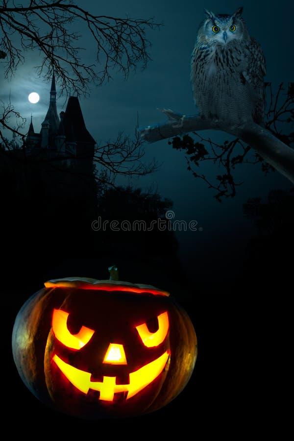 Enge pompoen op Halloween nigh vector illustratie
