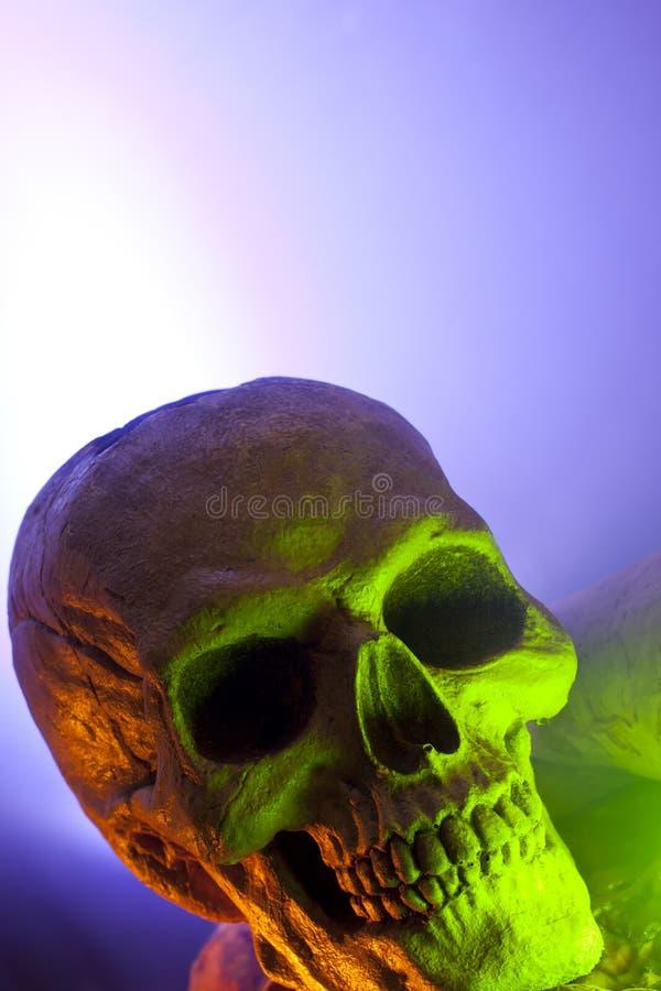 Enge Schedel in Groen Licht stock afbeelding