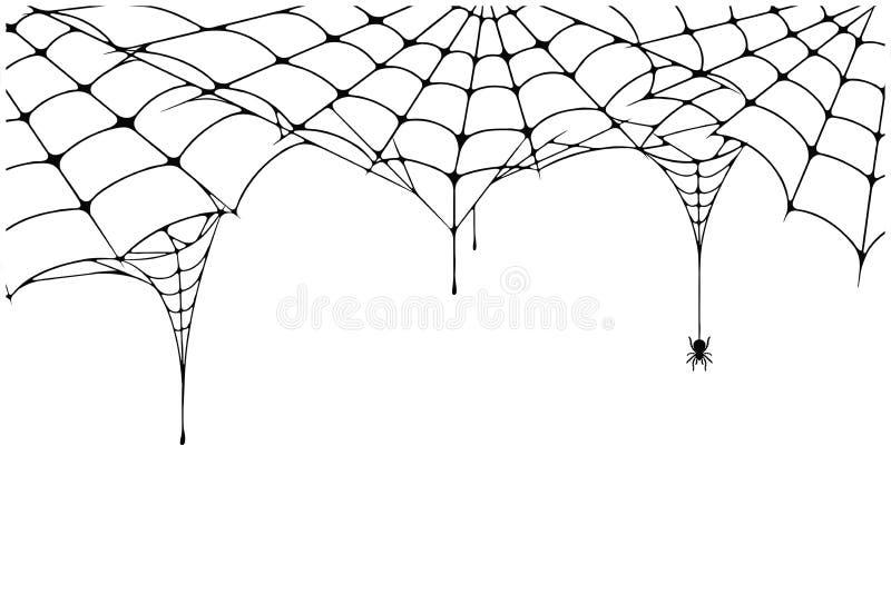 Enge spinnewebachtergrond Spinnewebachtergrond met spin Griezelig spinneweb voor Halloween-decoratie stock illustratie