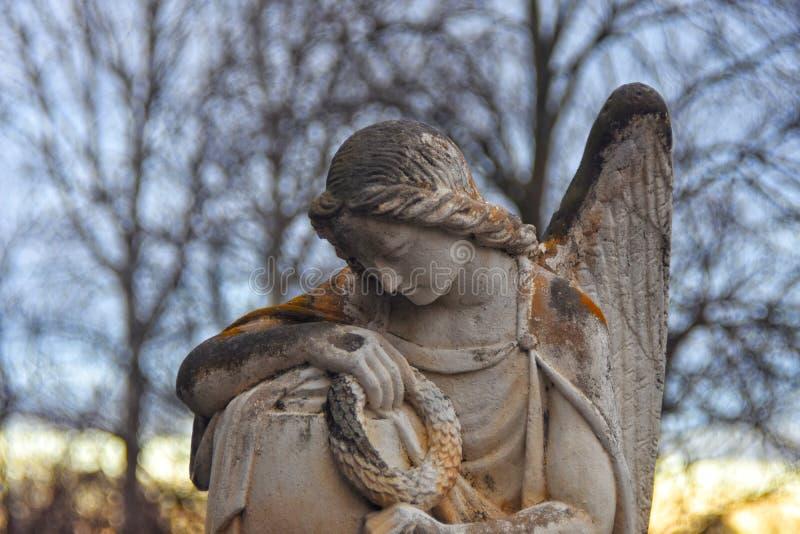Engel royalty-vrije stock afbeelding