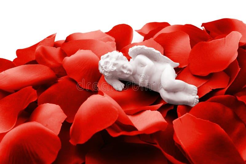 Engel, der in den rosafarbenen Blumenblättern des Valentinsgrußes schläft stockbilder