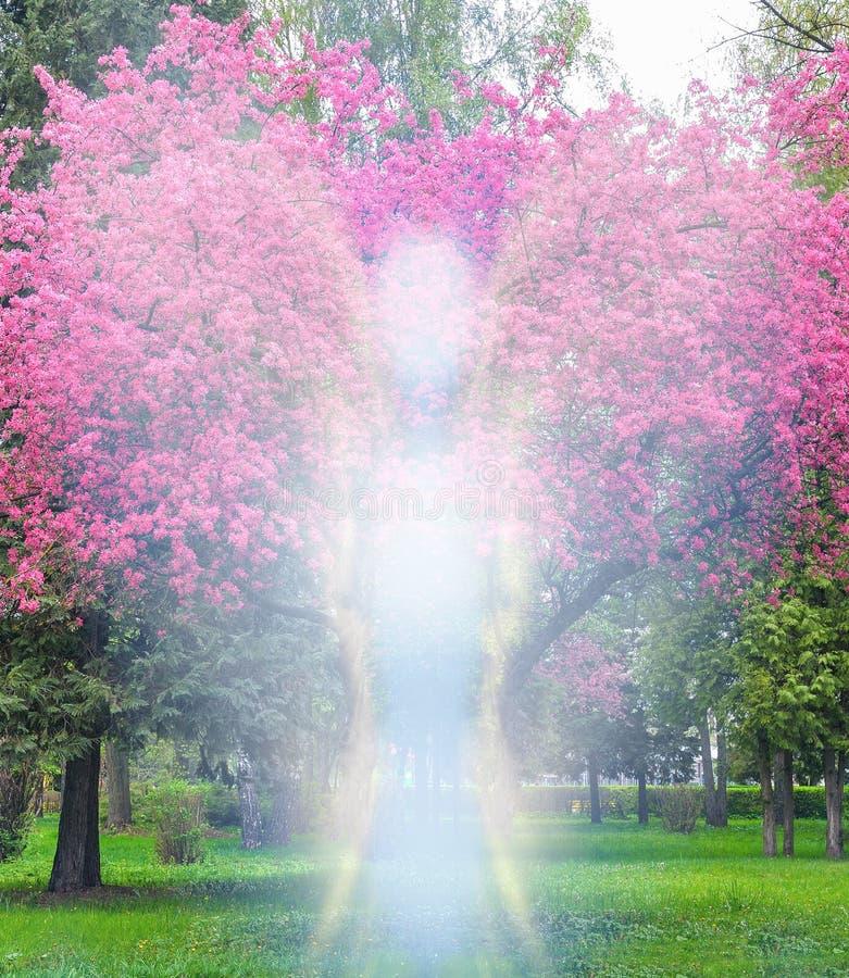Engel en de boom van de kersenbloesem in de lente royalty-vrije stock afbeelding