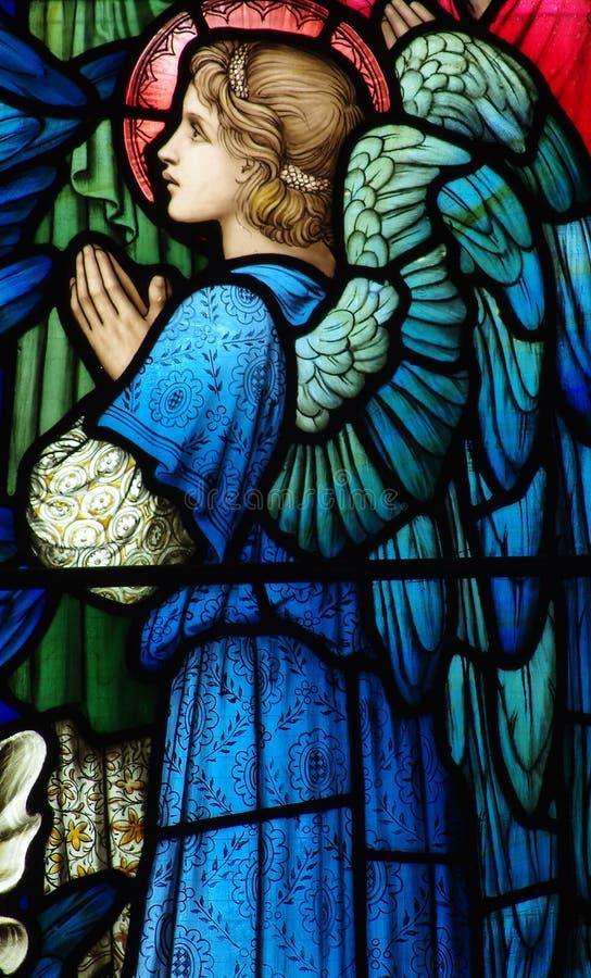 Engel (het bidden) in gebrandschilderd glas stock foto